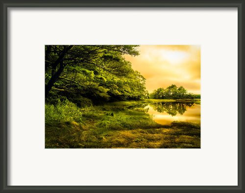 Salt Marsh Kittery Maine Framed Print By Bob Orsillo