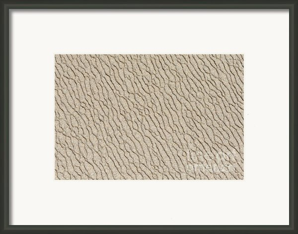 Sand Skin Framed Print By Artist And Photographer Laura Wrede