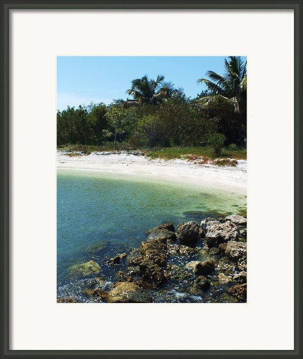 Sanibel Cove Framed Print By Anna Villarreal Garbis
