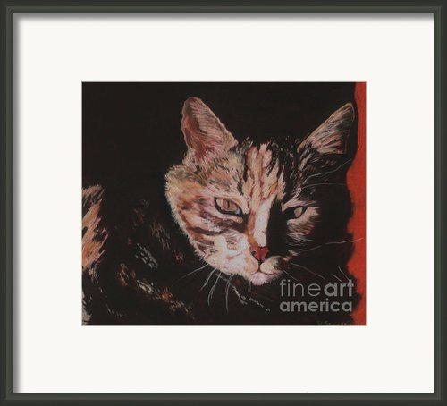Sasha Framed Print By Pat Saunders-white