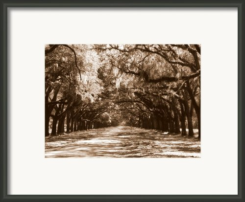 Savannah Sepia - The Old South Framed Print By Carol Groenen