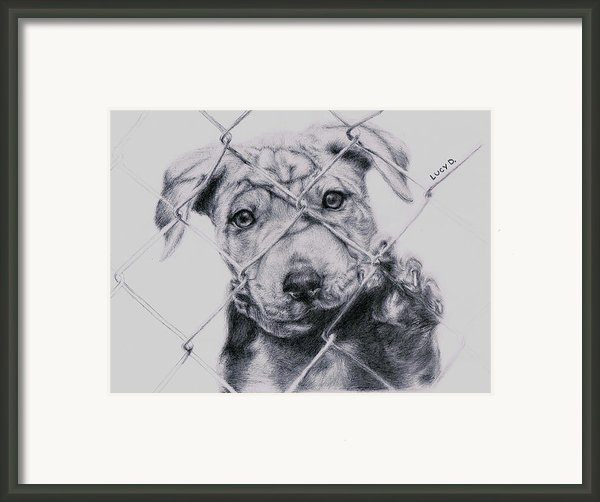 Save Me Framed Print By Lucy D