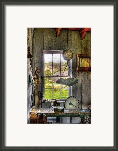 Scales - Scales Framed Print By Mike Savad