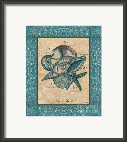 Scientific Drawing Framed Print By Debbie Dewitt