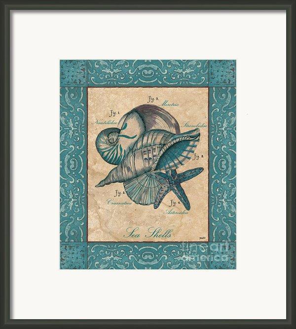 Scientific Drawing Framed Print By Debbie Dewitt