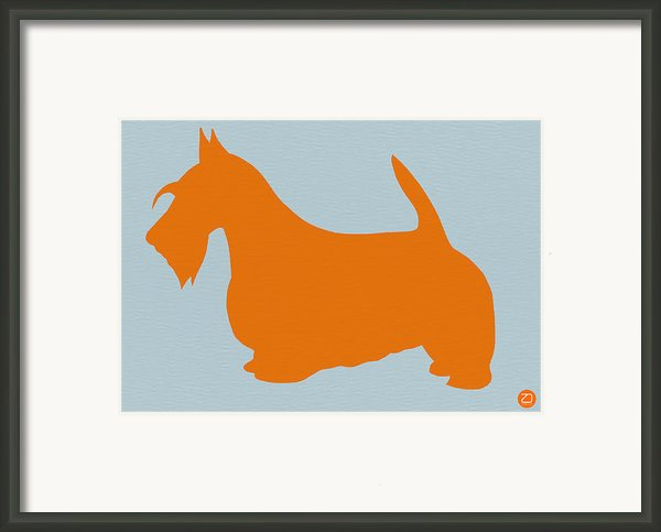 Scottish Terrier Orange Framed Print By Naxart Studio