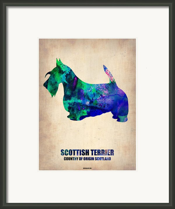 Scottish Terrier Poster Framed Print By Irina  March