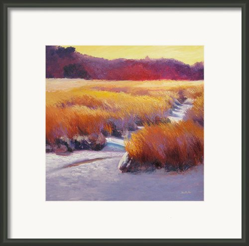 Sea Path Framed Print By Sheila Psaledas