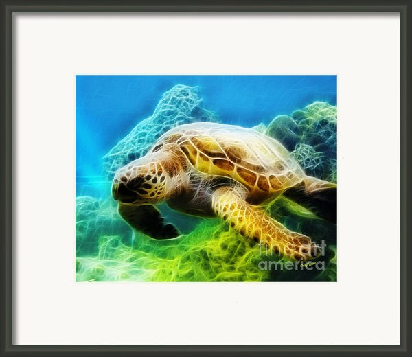 Sea Turtle 1 Framed Print By Cheryl Young