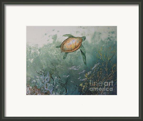 Sea Turtle Framed Print By Nancy Gorr