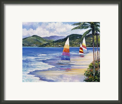 Seaside Sails Framed Print By John Zaccheo