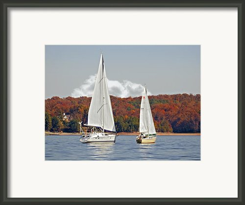 Seasonal Sailing Framed Print By Susan Leggett