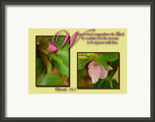 Secret Of Peace Framed Print By Larry Bishop