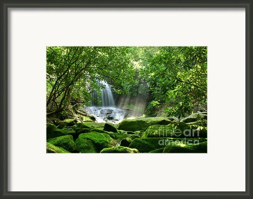 Secret Paradise - Hidden Appalachian Waterfall Framed Print By Matt Tilghman