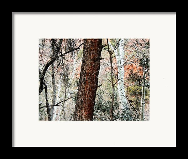 Sedona Layers Framed Print By Todd Sherlock