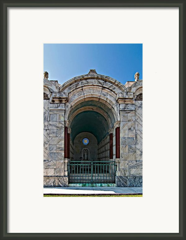 Serious Business Framed Print By Steve Harrington