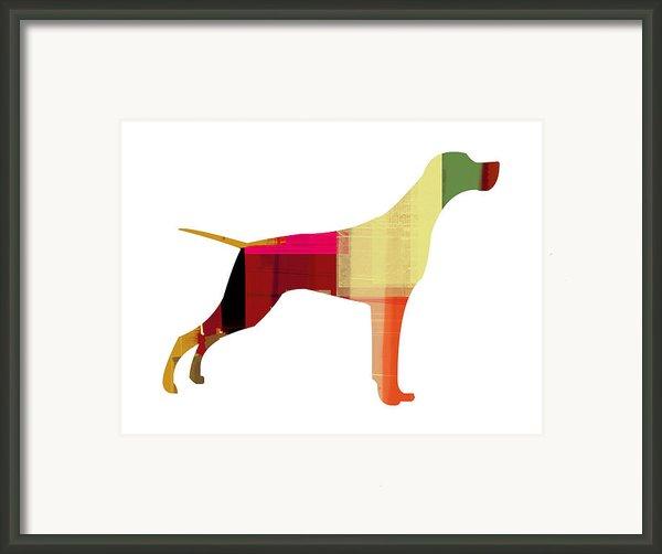 Setter Pointer Framed Print By Irina  March
