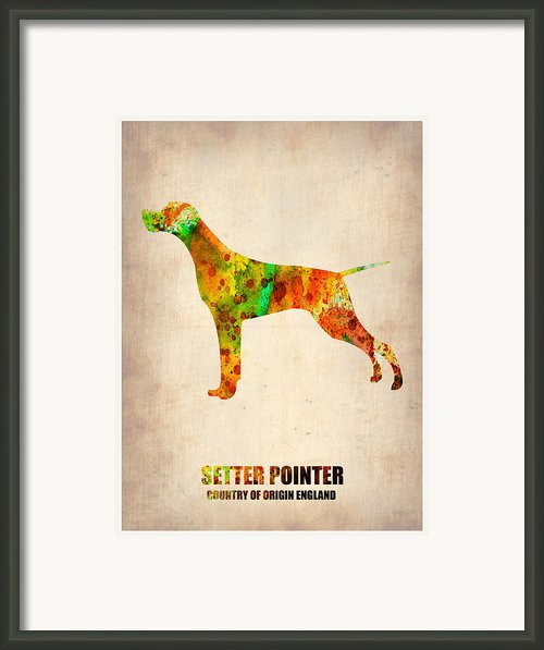 Setter Pointer Poster Framed Print By Irina  March