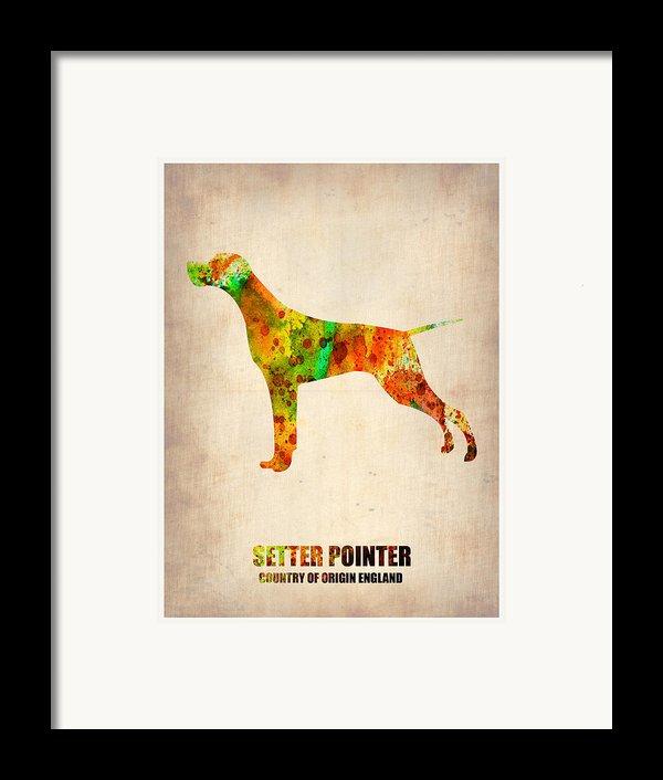 Setter Pointer Poster Framed Print By Naxart Studio