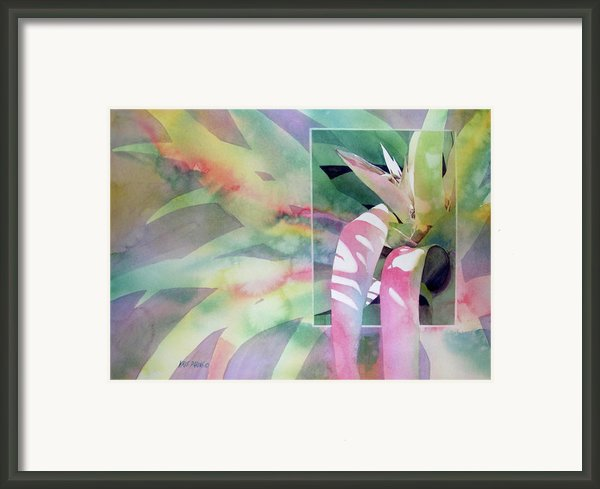 Shadow Play Framed Print By Kris Parins
