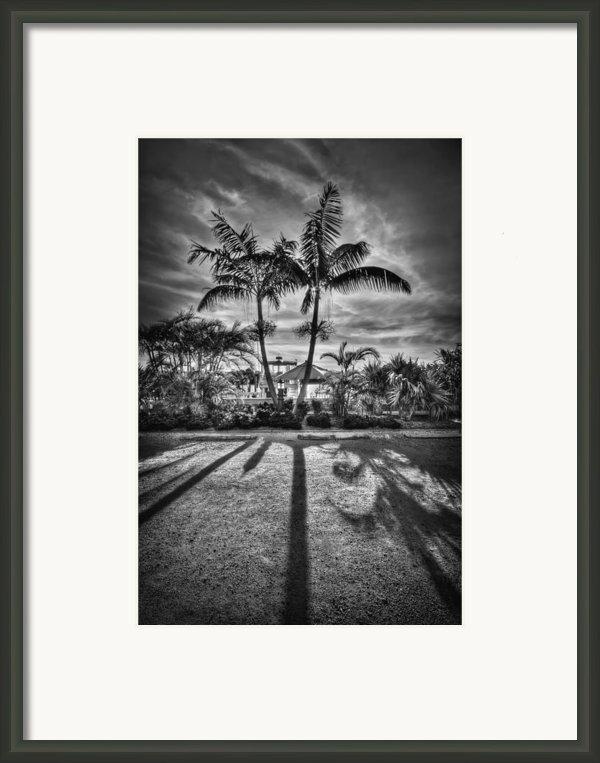 Shadow Waltz Framed Print By Evelina Kremsdorf