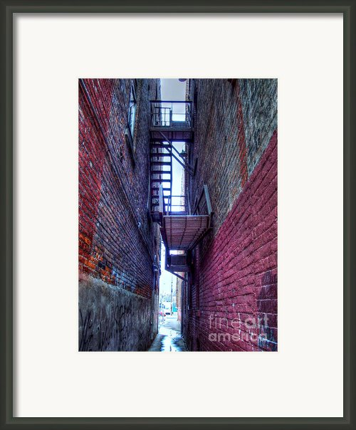 Shared Escape Framed Print By Mj Olsen