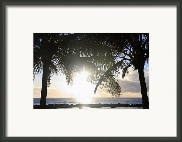 Sharks Cove Sunset Framed Print By Brandon Tabiolo