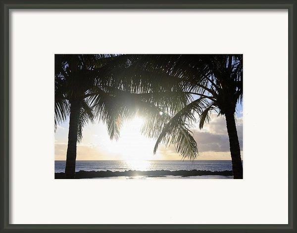 Sharks Cove Sunset Framed Print By Brandon Tabiolo