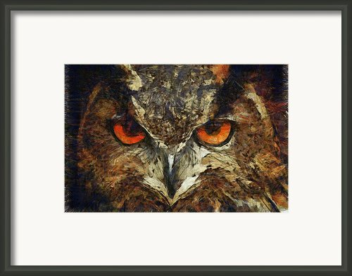 Sharpie Owl Framed Print By Ayse T Werner