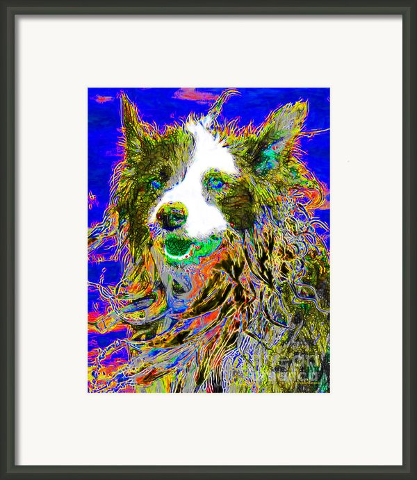 Sheep Dog 20130125v3 Framed Print By Wingsdomain Art And Photography