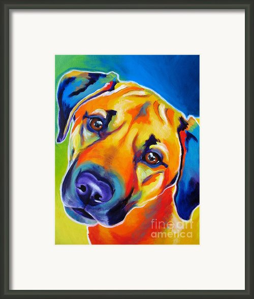 Shepherd Mix - Puppy Dog Eyes Framed Print By Alicia Vannoy Call
