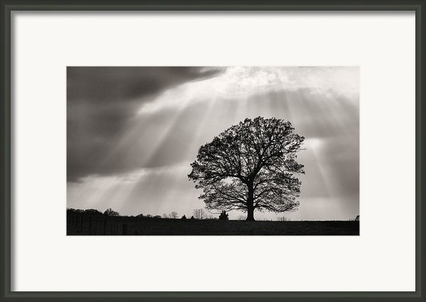 Shining Down Framed Print By Jc Findley