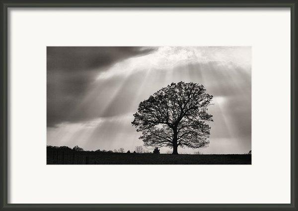 Shining Down Framed Print By Jc Findley