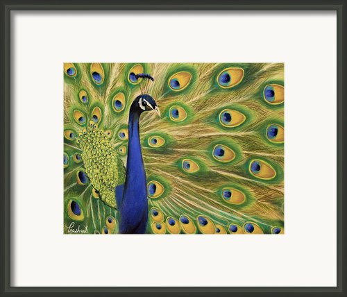 Showoff - Peacock Painting Framed Print By Prashant Shah