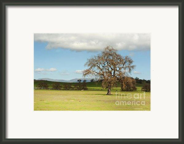 Silicon Valley Hills Framed Print By Author And Photographer Laura Wrede