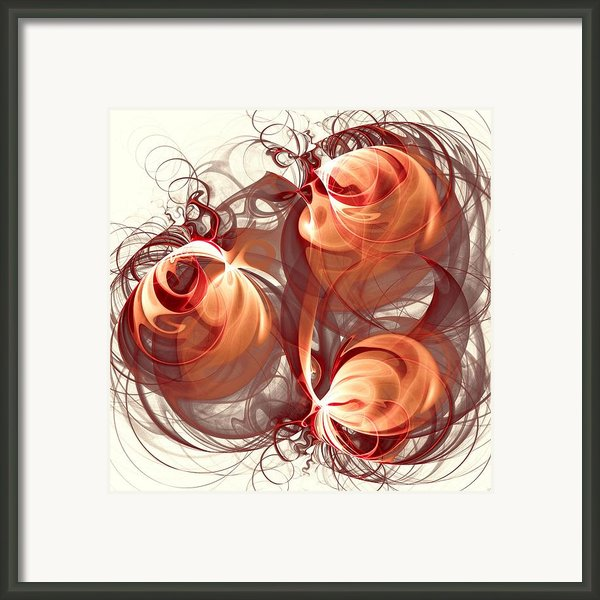 Silk Labyrinth Framed Print By Anastasiya Malakhova