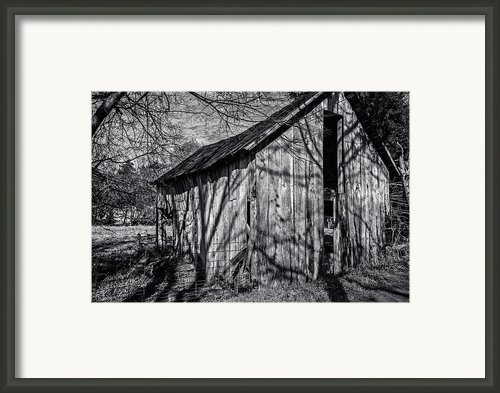 Silver Grey Framed Print By Cj Schmit