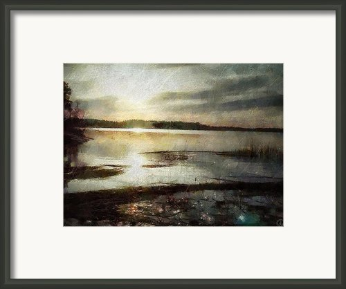 Silver Morning Framed Print By Gun Legler