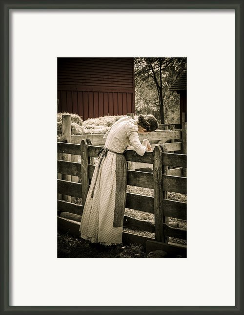 Simple Life 5 Framed Print By Julie Palencia