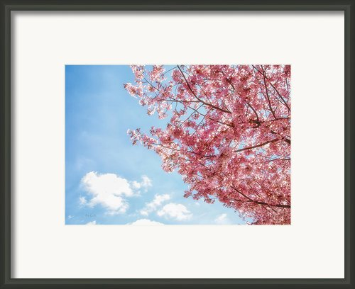 Simply Spring Framed Print By Bob Orsillo