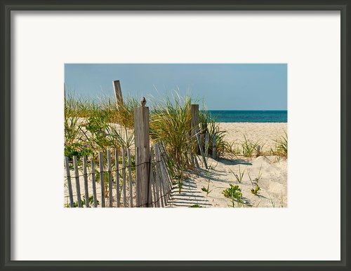 Singer At The Shore Framed Print By Michelle Wiarda