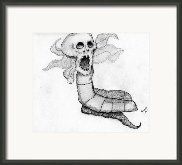 Skull Snake Framed Print By Dan Twyman
