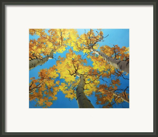 Sky High 4 Framed Print By Gary Kim
