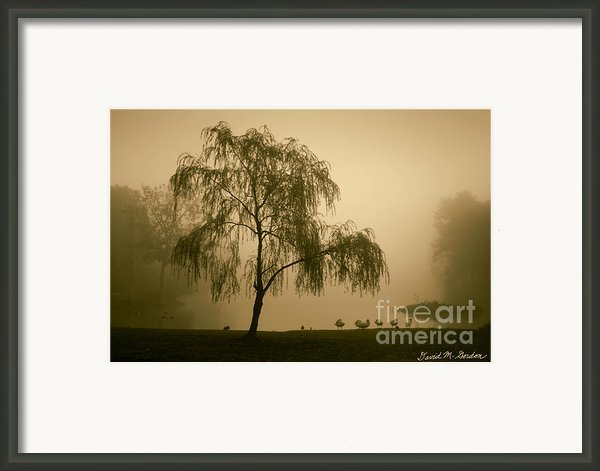 Slater Park Landscape No. 1 Framed Print By Dave Gordon