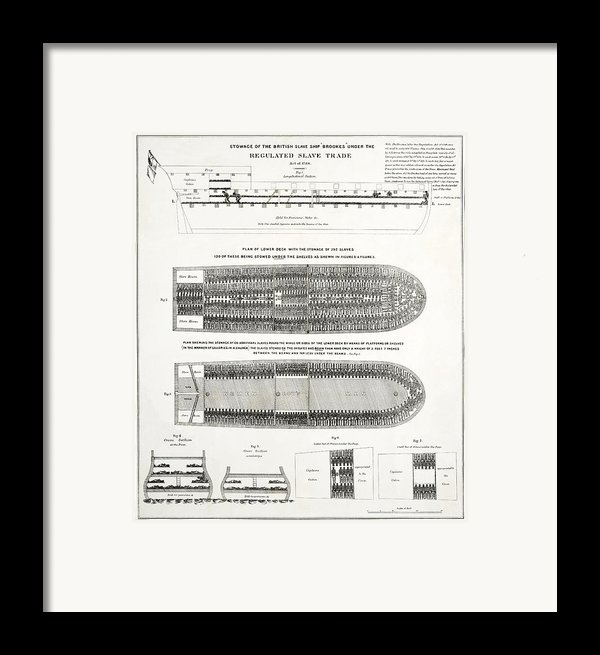 Slave Ship Middle Passage Stowage Diagram  1788 Framed Print By Daniel Hagerman