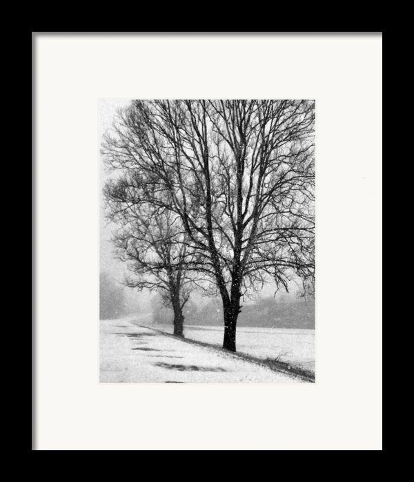 Slow Going I Framed Print By Julie Dant