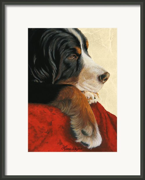 Slumber Framed Print By Liane Weyers