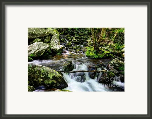 Smoky Mountain Stream 4 Framed Print By Mel Steinhauer