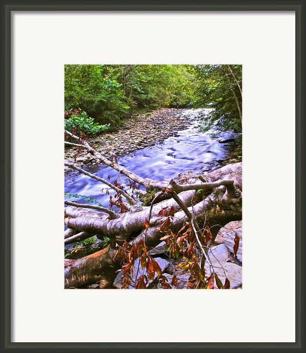 Smoky Mountain Stream Two Framed Print By Robert Harmon