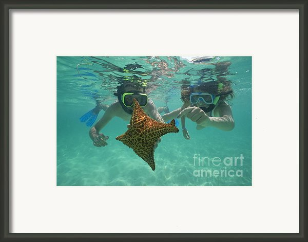 Snorkellers Holding A Four Legs Starfish Framed Print By Sami Sarkis